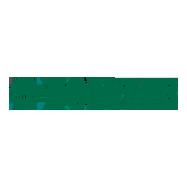 Toepfer